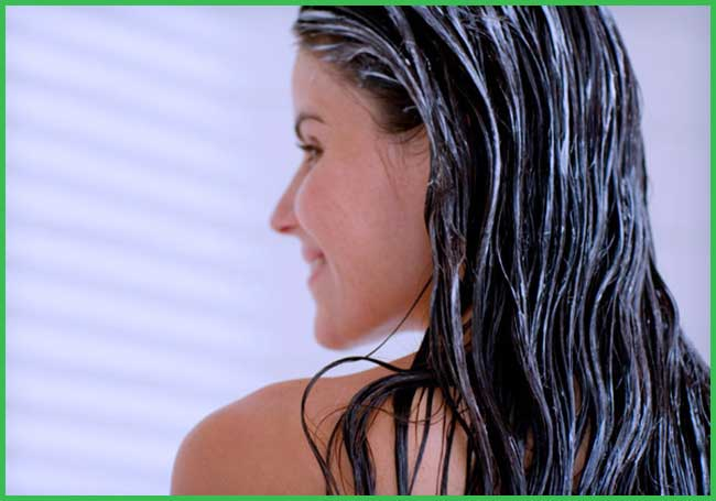 coconut milk for hair conditioner