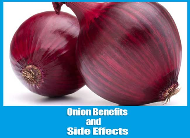 Onion Benefits and Side Effects