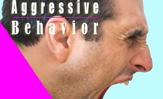 Causes of Aggressive Behavior