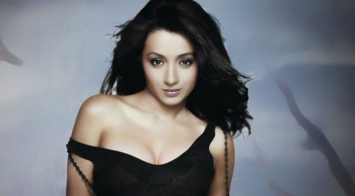 south indian actress Trisha Krishnan