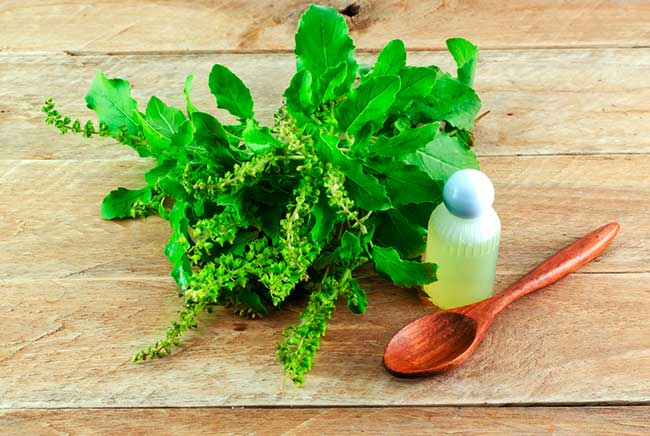 Tulsi and Mint Face Pack for Acne